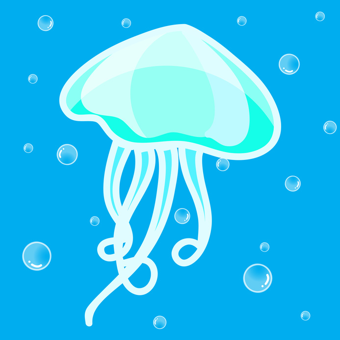 Jellyfish cute cartoon